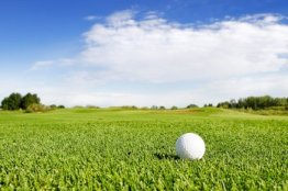 golf group fairway